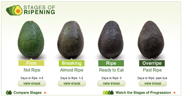 avocado rijpheidstest