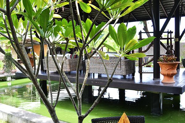 snapshot_diary_thailand3-4