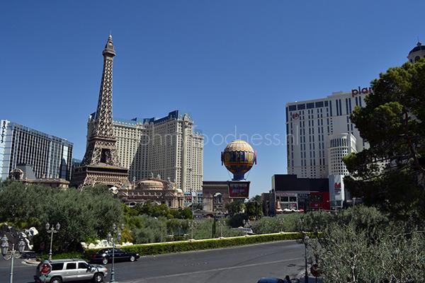 Vegas aansluiting tips
