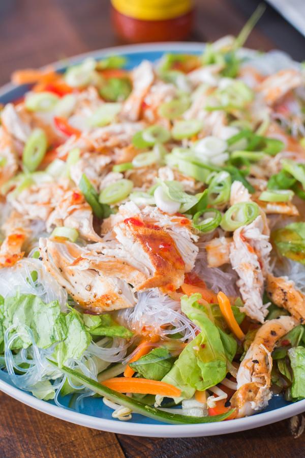 Vietnamese springroll salade
