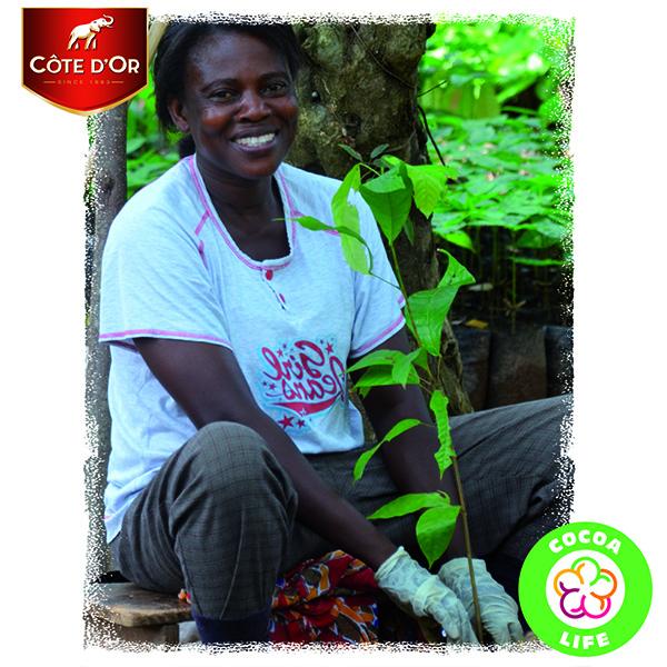 Cacao Life
