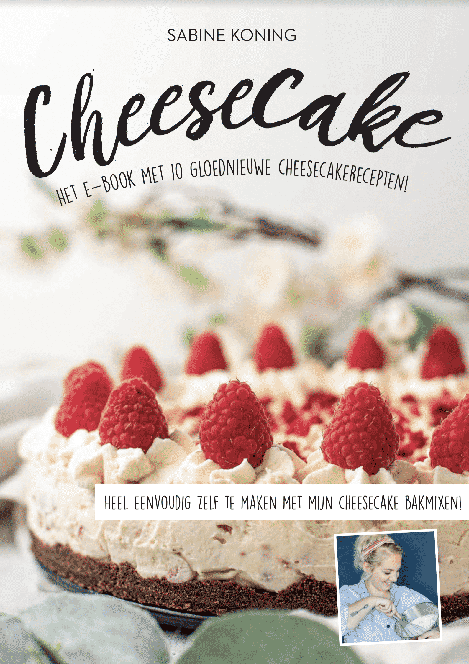 Cheesecake E-book